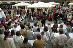 Fête des associations - juin 2011 (8)